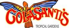 Colasanti's Logo