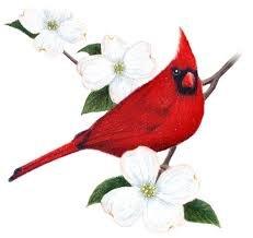 Cardinal Timber Logo