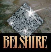 Belshire Concrete Logo